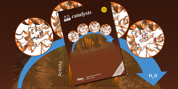 DTU Chemistry - Cover on 'Catalysts'